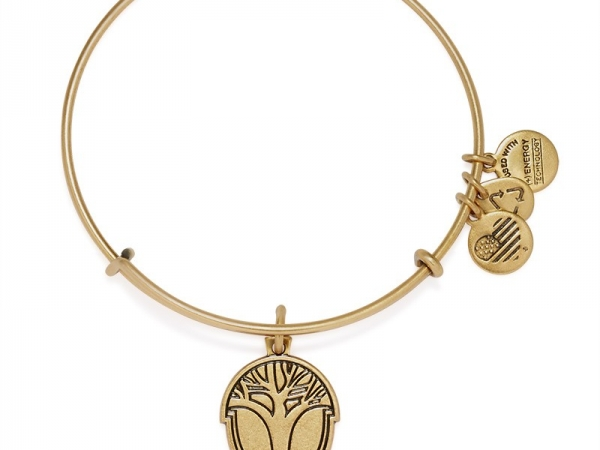 Alex and Ani 18 by Alex and Ani