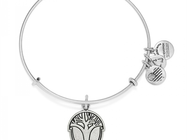 Alex and Ani 17 by Alex and Ani