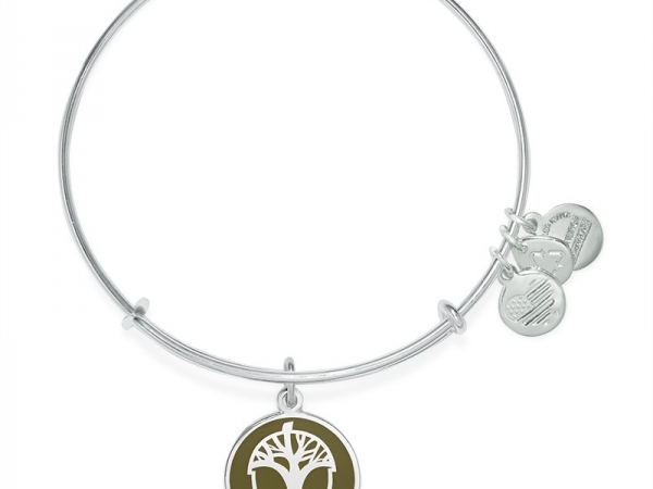 Alex and Ani 15 by Alex and Ani