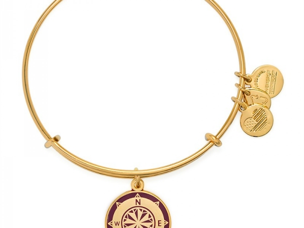Alex and Ani 13 by Alex and Ani