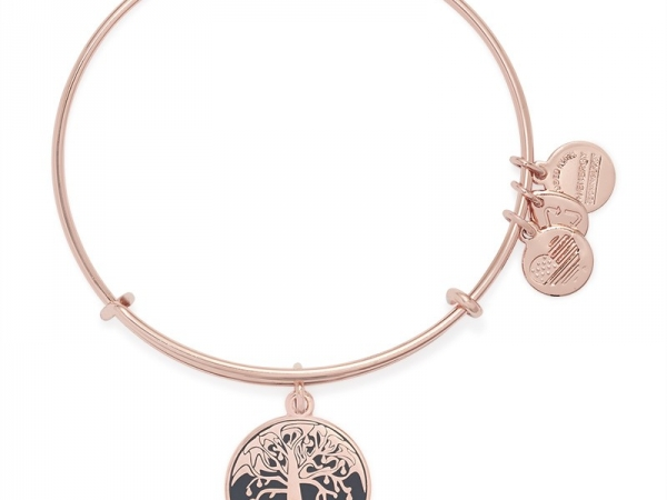 Alex and Ani 10 by Alex and Ani